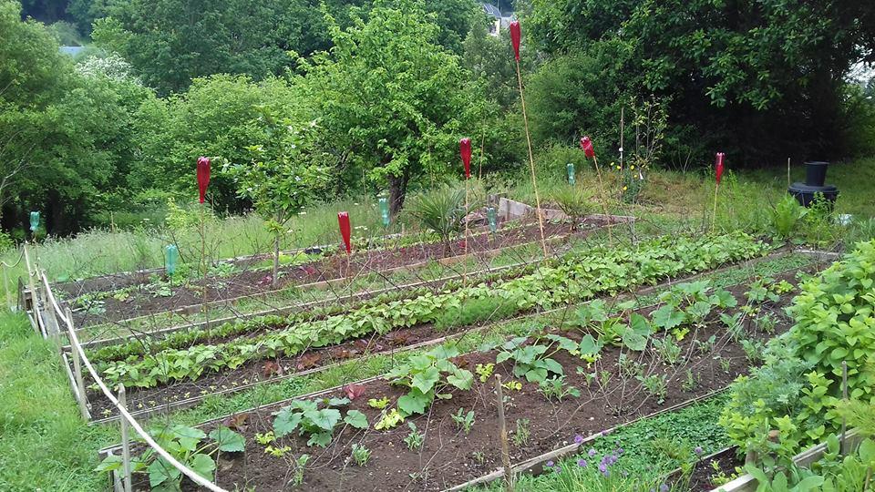 Les jardins solidaires des ateliers de jardinage et un for Site de jardinage